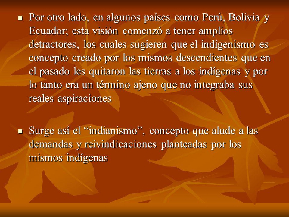 Por otro lado, en algunos países como Perú, Bolivia y Ecuador; esta visión comenzó a tener amplios detractores, los cuales sugieren que el indigenismo