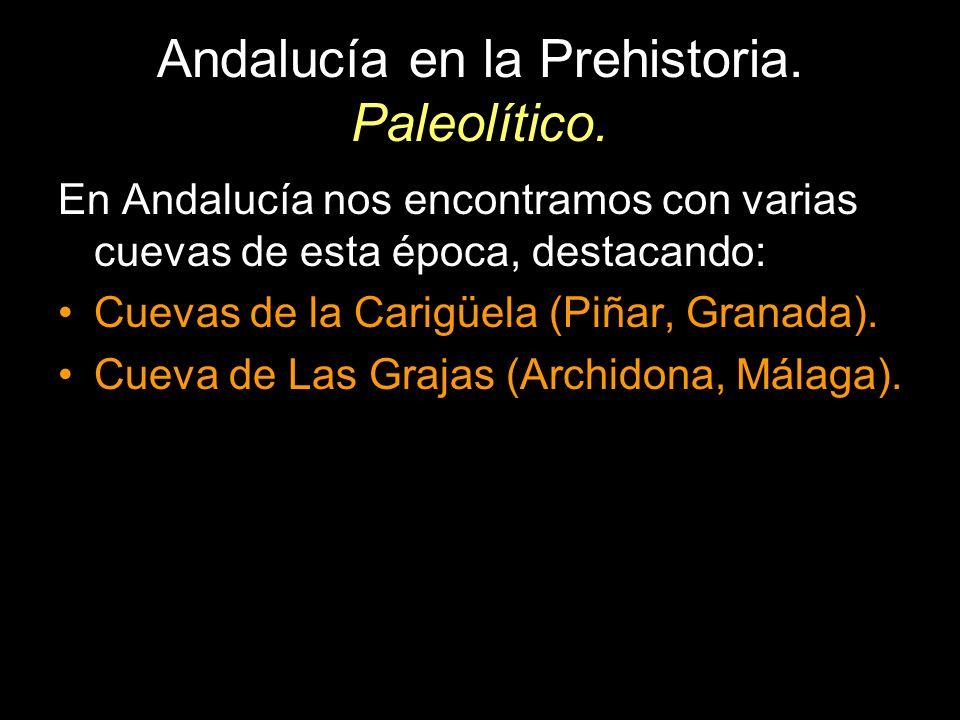 Andalucía en la Prehistoria. Paleolítico. En Andalucía nos encontramos con varias cuevas de esta época, destacando: Cuevas de la Carigüela (Piñar, Gra