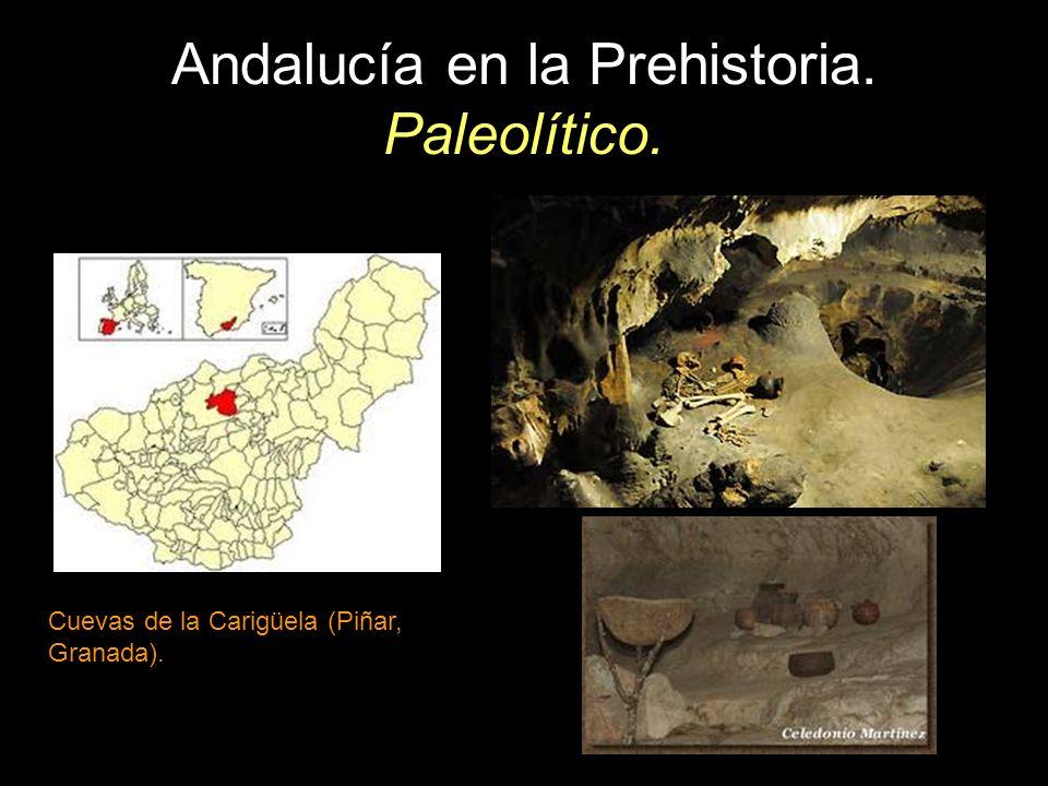 Andalucía en la Prehistoria. Paleolítico. Cuevas de la Carigüela (Piñar, Granada).