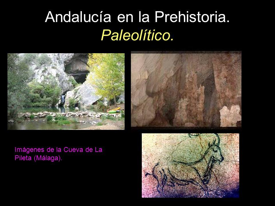 Imágenes de la Cueva de La Pileta (Málaga).