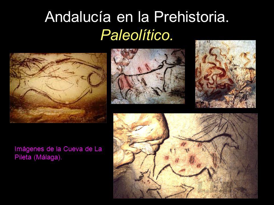 Andalucía en la Prehistoria. Paleolítico. Imágenes de la Cueva de La Pileta (Málaga).