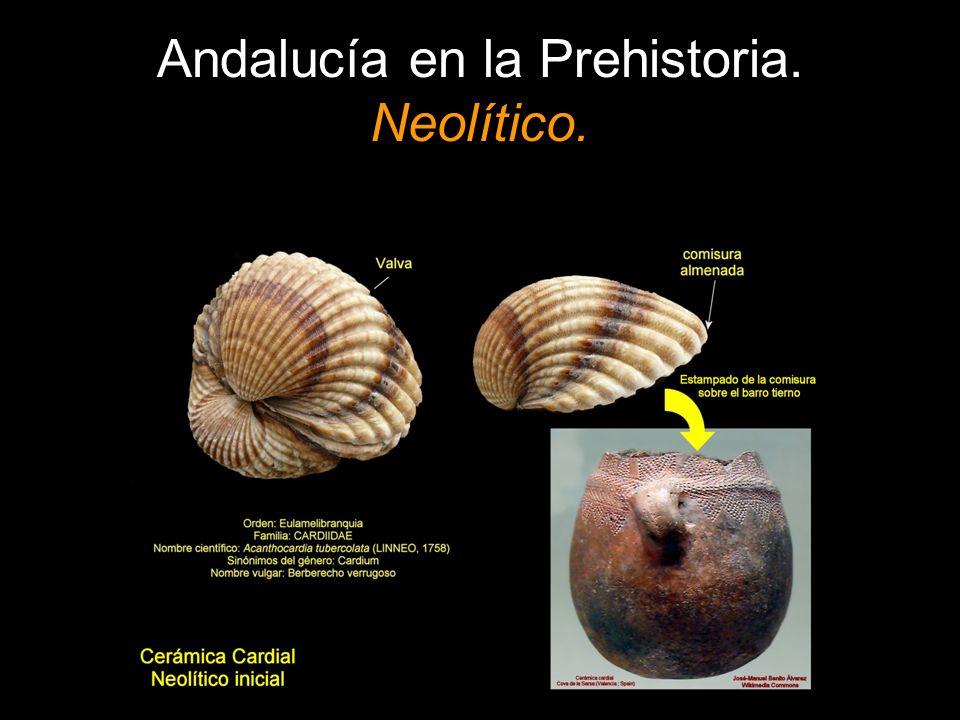 Andalucía en la Prehistoria. Neolítico.