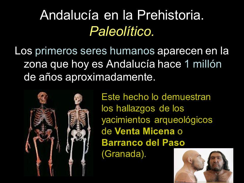 Andalucía en la Prehistoria. Paleolítico. Los primeros seres humanos aparecen en la zona que hoy es Andalucía hace 1 millón de años aproximadamente. E