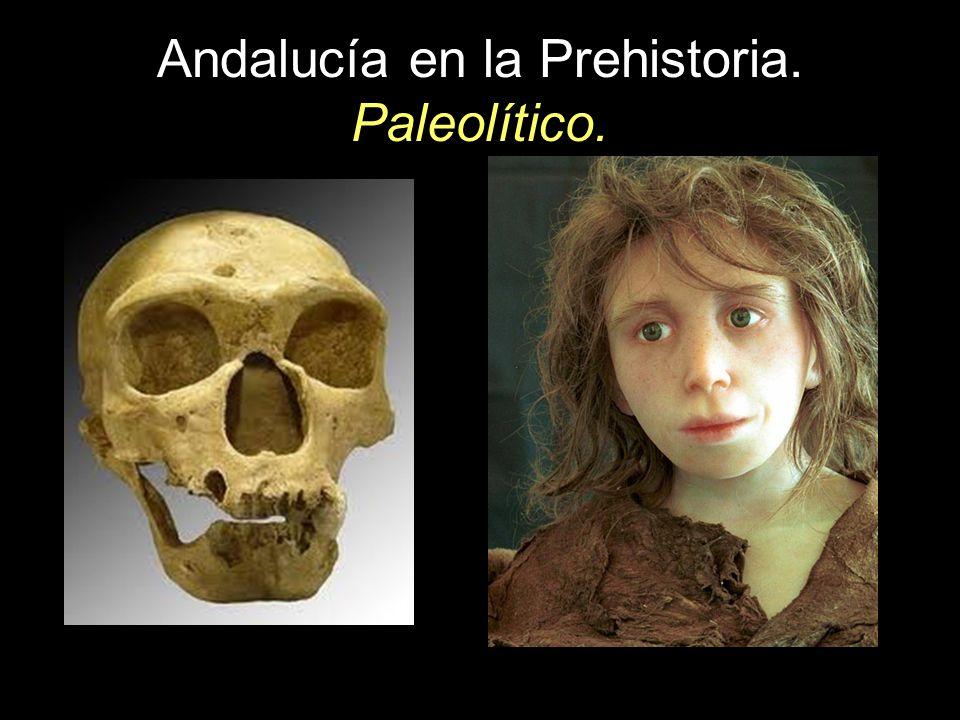 Andalucía en la Prehistoria. Paleolítico.
