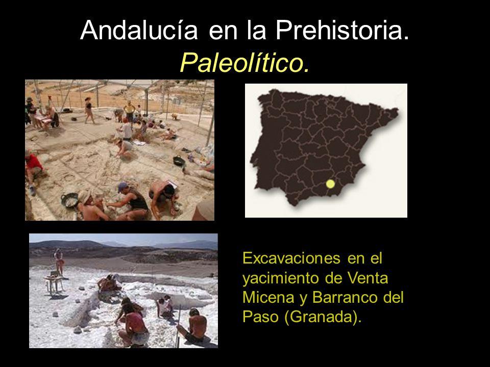 Excavaciones en el yacimiento de Venta Micena y Barranco del Paso (Granada).