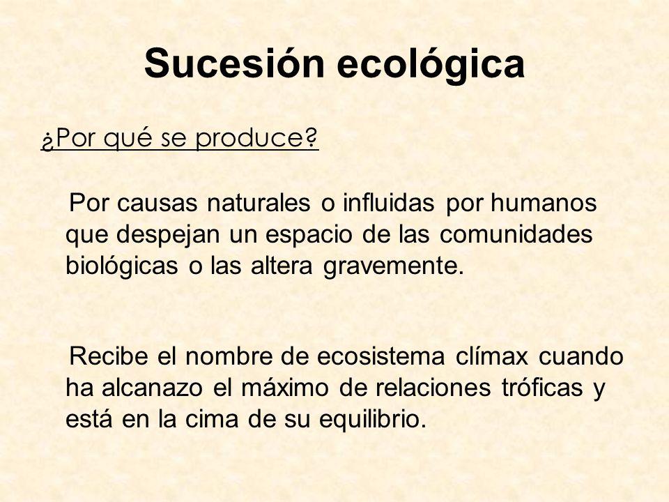 Sucesión ecológica ¿Por qué se produce? Por causas naturales o influidas por humanos que despejan un espacio de las comunidades biológicas o las alter