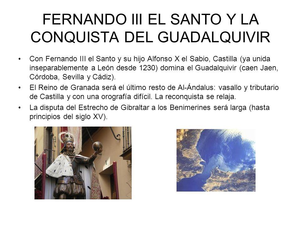 FERNANDO III EL SANTO Y LA CONQUISTA DEL GUADALQUIVIR Con Fernando III el Santo y su hijo Alfonso X el Sabio, Castilla (ya unida inseparablemente a León desde 1230) domina el Guadalquivir (caen Jaen, Córdoba, Sevilla y Cádiz).