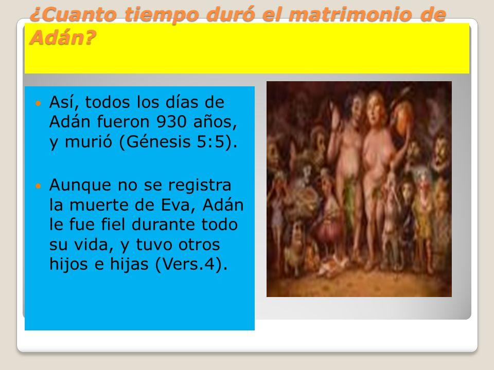 ¿Cuanto tiempo duró el matrimonio de Adán? Así, todos los días de Adán fueron 930 años, y murió (Génesis 5:5). Aunque no se registra la muerte de Eva,