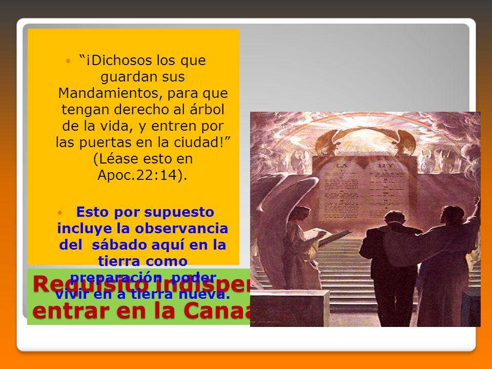Requisito indispensable para entrar en la Canaán Celestial ¡Dichosos los que guardan sus Mandamientos, para que tengan derecho al árbol de la vida, y