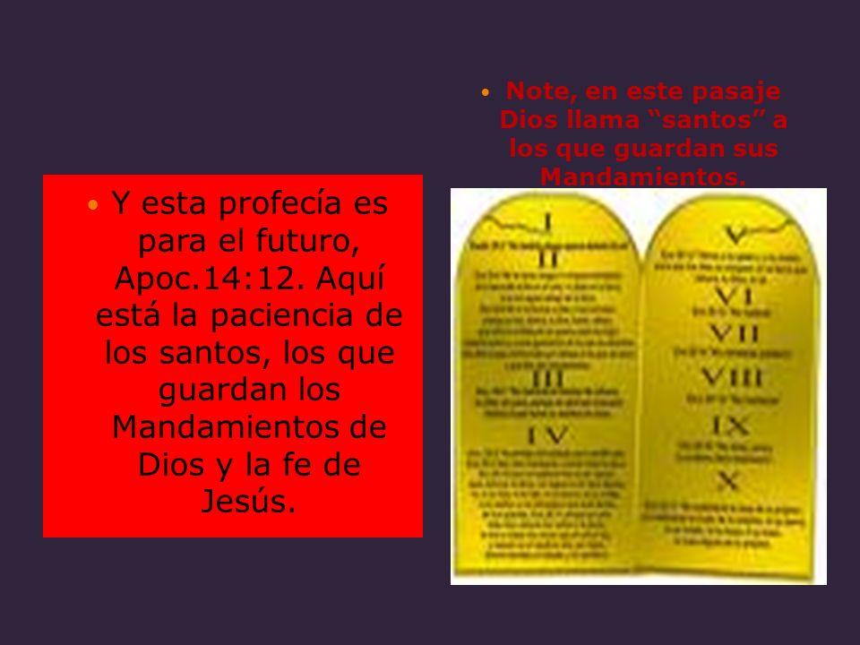 Y esta profecía es para el futuro, Apoc.14:12. Aquí está la paciencia de los santos, los que guardan los Mandamientos de Dios y la fe de Jesús. Note,