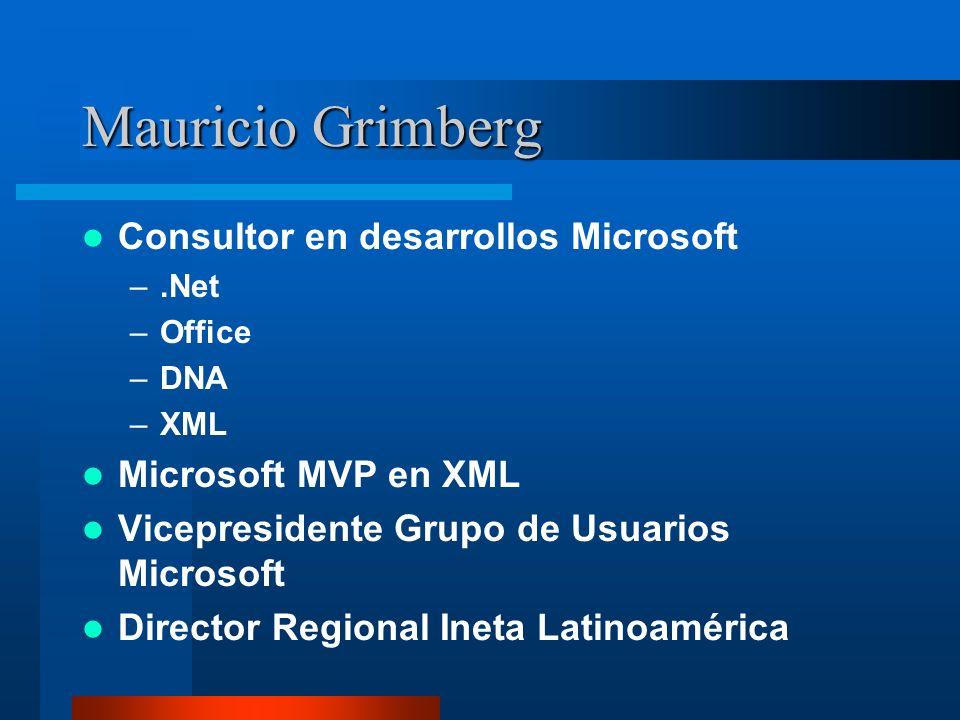 Mauricio Grimberg Consultor en desarrollos Microsoft –.Net –Office –DNA –XML Microsoft MVP en XML Vicepresidente Grupo de Usuarios Microsoft Director