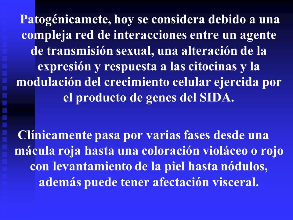 Patogénicamete, hoy se considera debido a una compleja red de interacciones entre un agente de transmisión sexual, una alteración de la expresión y re