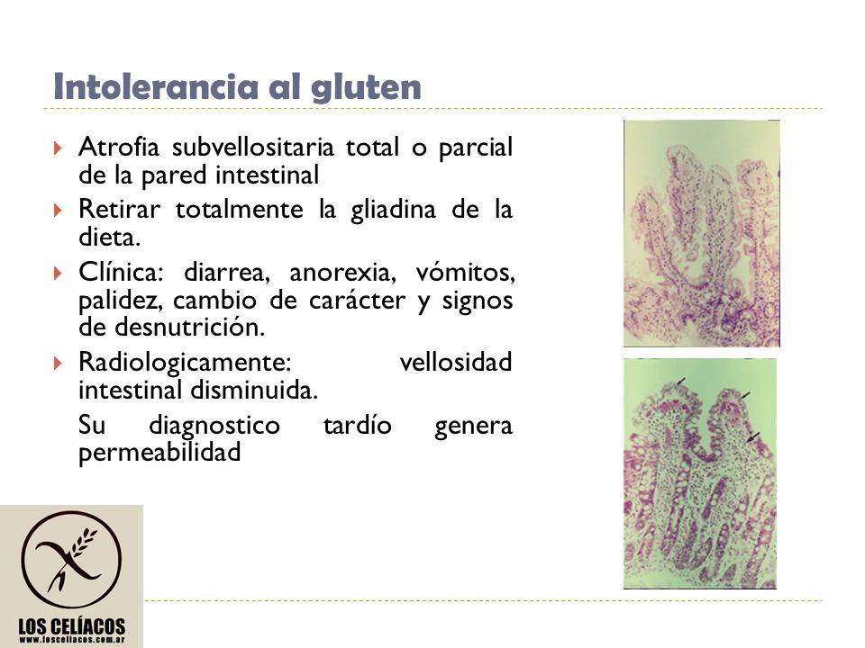Intolerancia al gluten Atrofia subvellositaria total o parcial de la pared intestinal Retirar totalmente la gliadina de la dieta. Clínica: diarrea, an