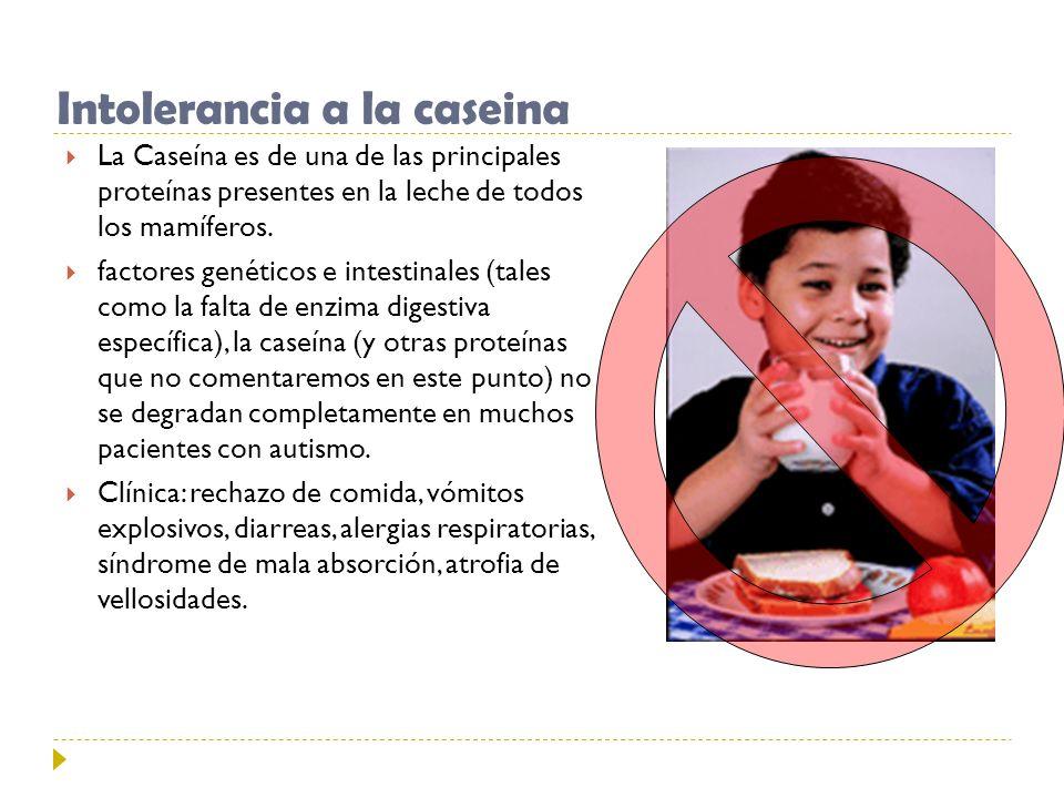 Intolerancia a la caseina La Caseína es de una de las principales proteínas presentes en la leche de todos los mamíferos. factores genéticos e intesti