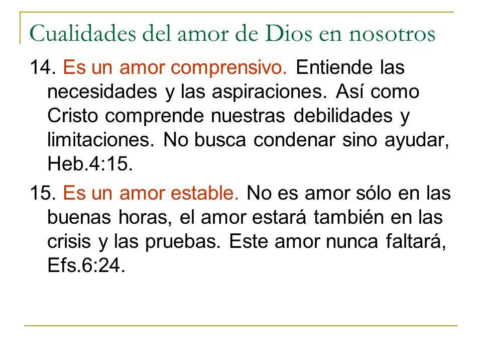 Cualidades del amor de Dios en nosotros 14. Es un amor comprensivo. Entiende las necesidades y las aspiraciones. Así como Cristo comprende nuestras de