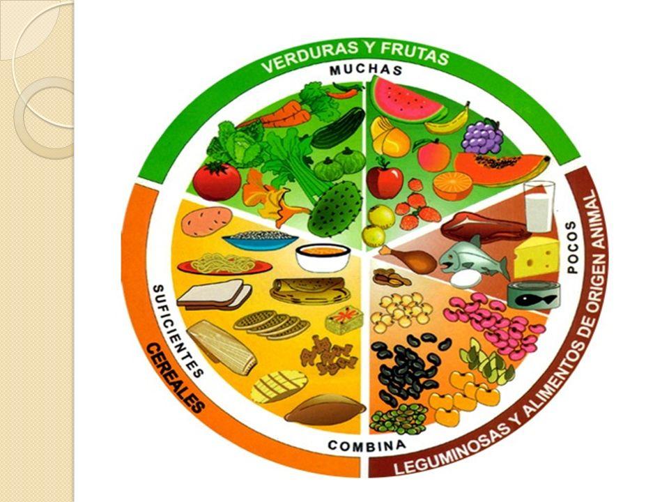 El plato del buen comer Es una guía alimentaria en forma de plato.
