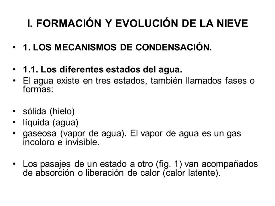 I. FORMACIÓN Y EVOLUCIÓN DE LA NIEVE 1. LOS MECANISMOS DE CONDENSACIÓN. 1.1. Los diferentes estados del agua. El agua existe en tres estados, también