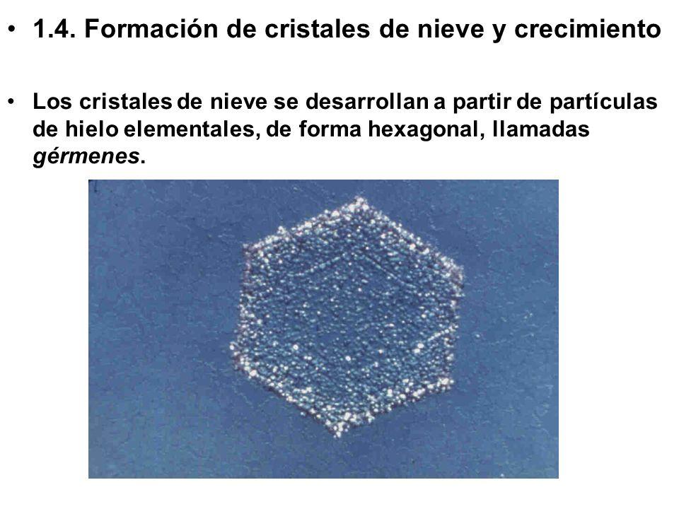 1.4. Formación de cristales de nieve y crecimiento Los cristales de nieve se desarrollan a partir de partículas de hielo elementales, de forma hexagon
