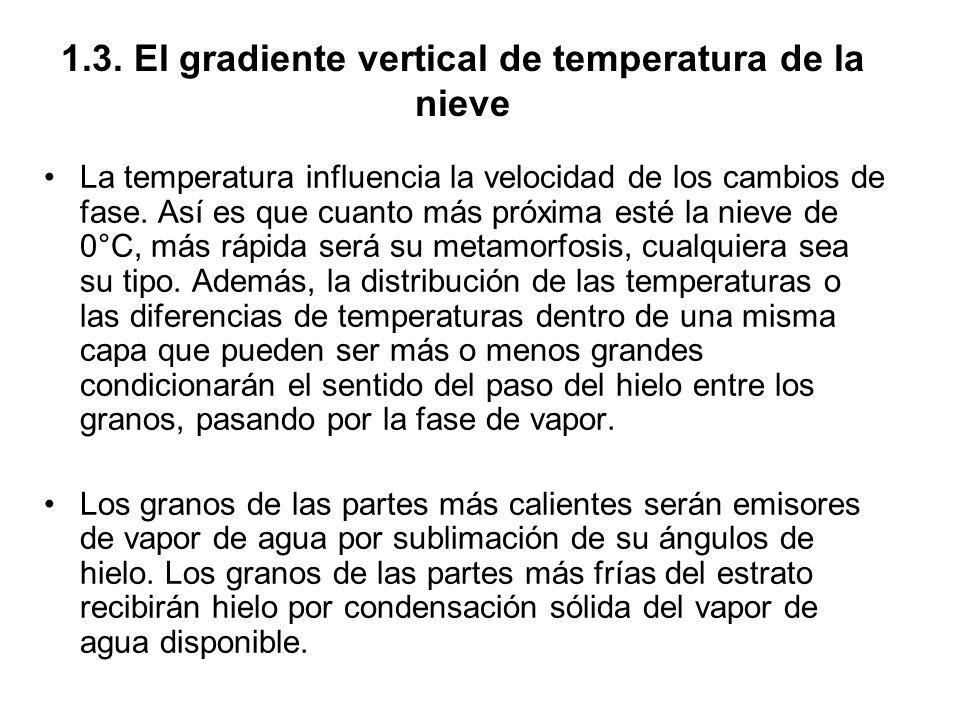 1.3. El gradiente vertical de temperatura de la nieve La temperatura influencia la velocidad de los cambios de fase. Así es que cuanto más próxima est