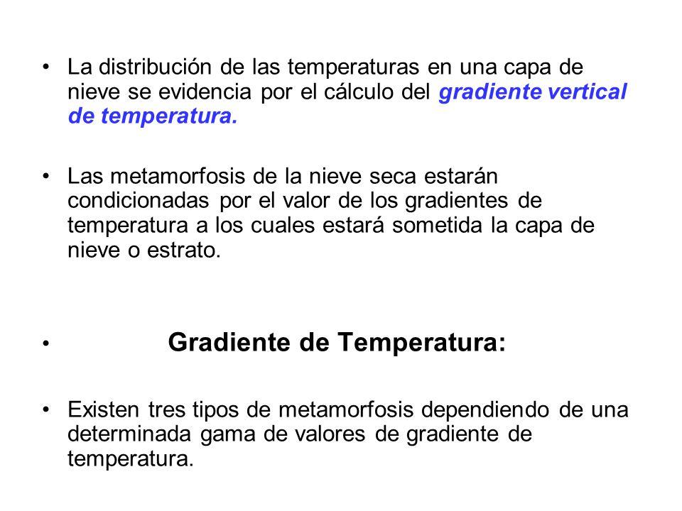 La distribución de las temperaturas en una capa de nieve se evidencia por el cálculo del gradiente vertical de temperatura. Las metamorfosis de la nie