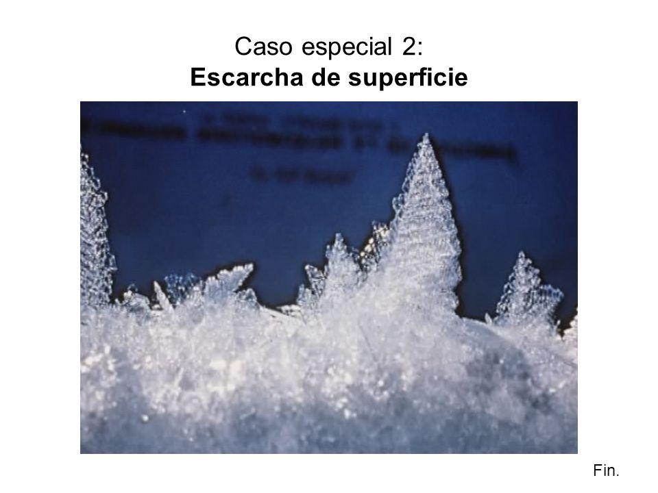 Caso especial 2: Escarcha de superficie Fin.