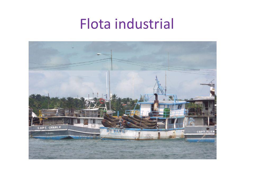 Flota industrial