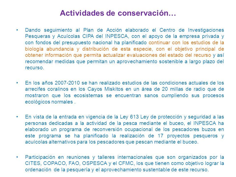 Actividades de conservación… Dando seguimiento al Plan de Acción elaborado el Centro de Investigaciones Pesqueras y Acuícolas CIPA del INPESCA, con el