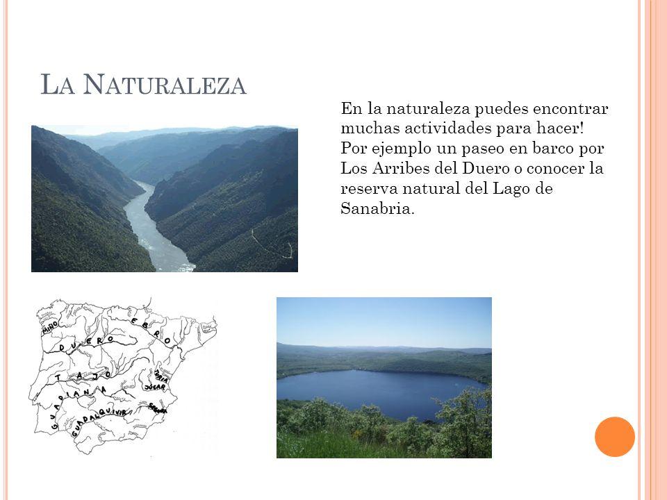 L A N ATURALEZA En la naturaleza puedes encontrar muchas actividades para hacer! Por ejemplo un paseo en barco por Los Arribes del Duero o conocer la