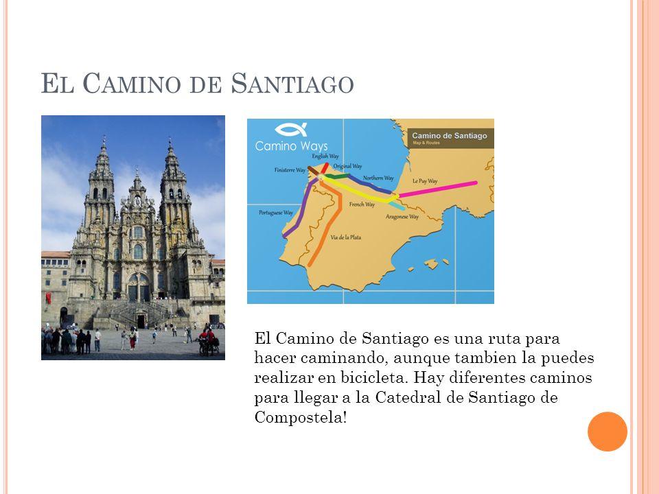 E L C AMINO DE S ANTIAGO El Camino de Santiago es una ruta para hacer caminando, aunque tambien la puedes realizar en bicicleta. Hay diferentes camino