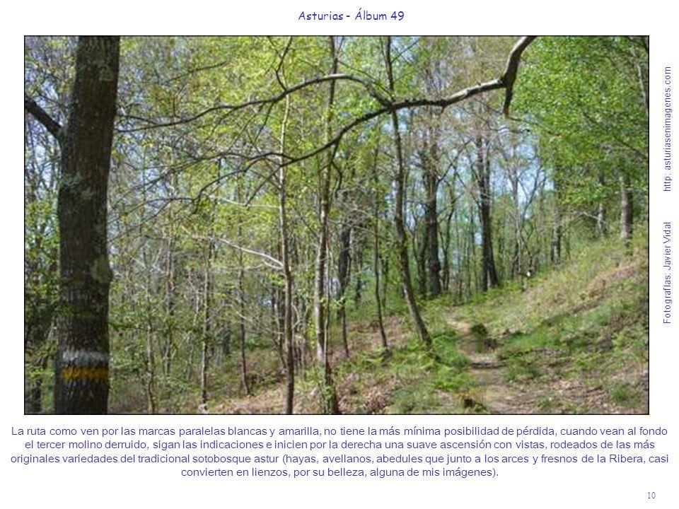 10 Asturias - Álbum 49 Fotografías: Javier Vidal http: asturiasenimagenes.com La ruta como ven por las marcas paralelas blancas y amarilla, no tiene l