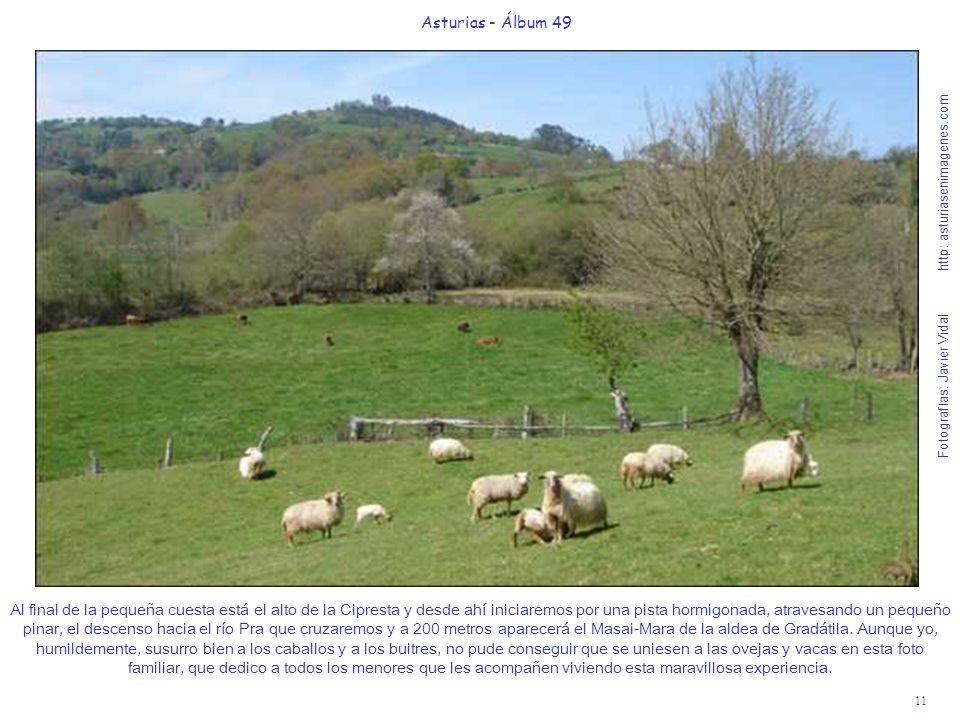 11 Asturias - Álbum 49 Fotografías: Javier Vidal http: asturiasenimagenes.com Al final de la pequeña cuesta está el alto de la Cipresta y desde ahí in