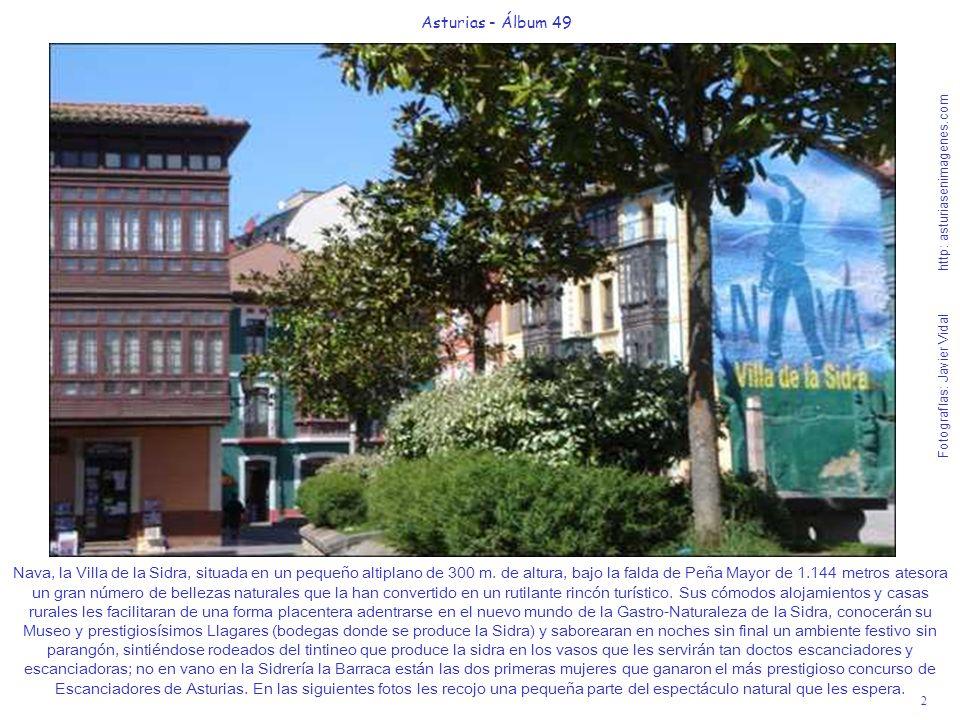2 Asturias - Álbum 49 Fotografías: Javier Vidal http: asturiasenimagenes.com Nava, la Villa de la Sidra, situada en un pequeño altiplano de 300 m. de