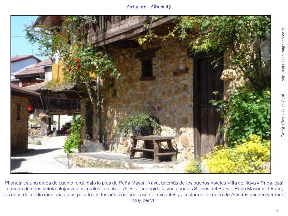 5 Asturias - Álbum 49 Fotografías: Javier Vidal http: asturiasenimagenes.com Nada más salir de Piloñeta, verán en el fondo del valle de río Pra, a la izquierda, la hendidura por donde discurre el Río de la Peña.