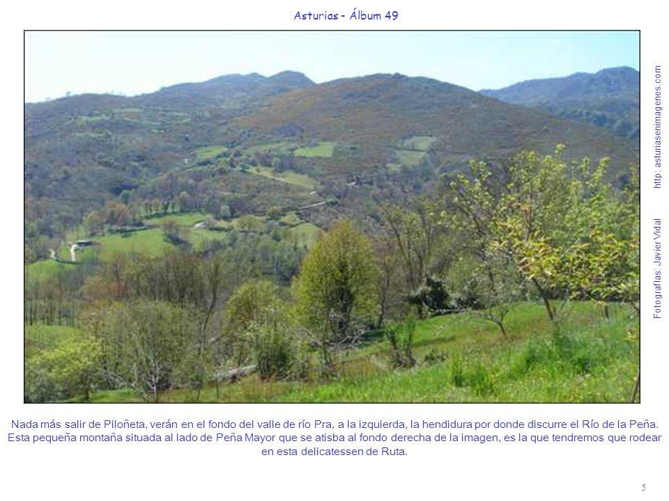 6 Asturias - Álbum 49 Fotografías: Javier Vidal http: asturiasenimagenes.com A 800 metros de Piloñeta, en un área recreativa cerca de un molino en el río Pra, se inicia la idílica y cómoda Ruta de la Ribera de Río de la Peña, son casi 5 Km.