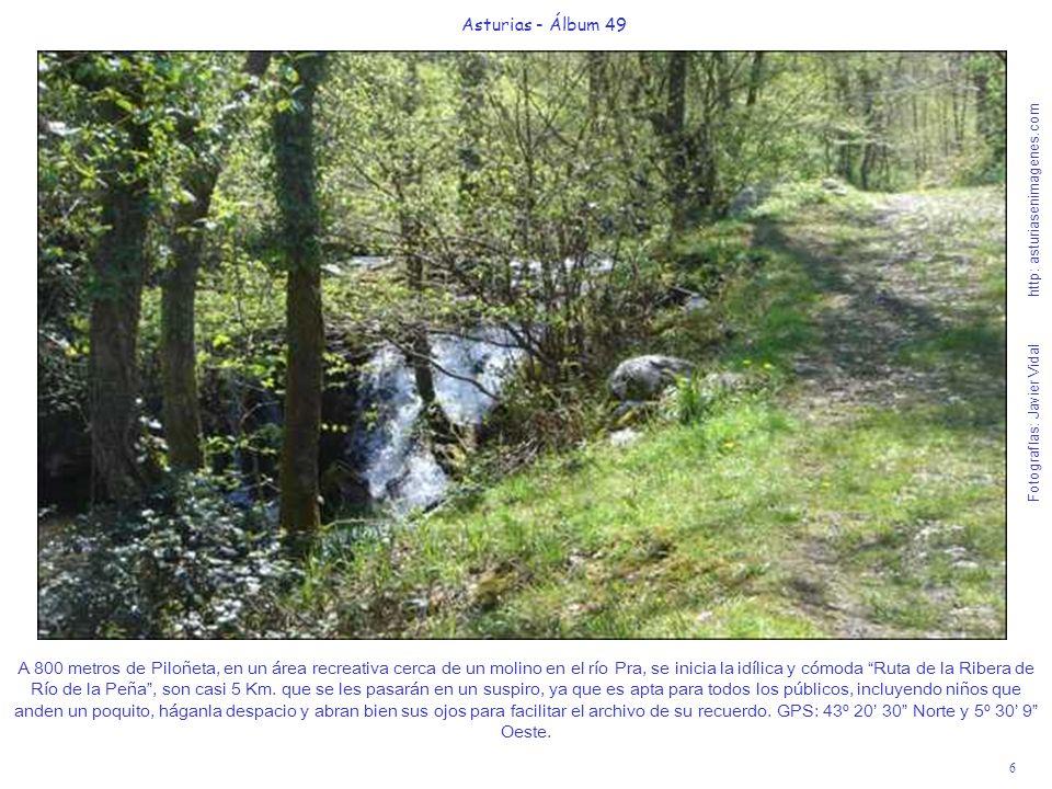 6 Asturias - Álbum 49 Fotografías: Javier Vidal http: asturiasenimagenes.com A 800 metros de Piloñeta, en un área recreativa cerca de un molino en el