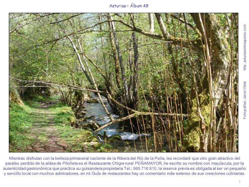 7 Asturias - Álbum 49 Fotografías: Javier Vidal http: asturiasenimagenes.com Mientras disfrutan con la belleza primaveral naciente de la Ribera del Rí