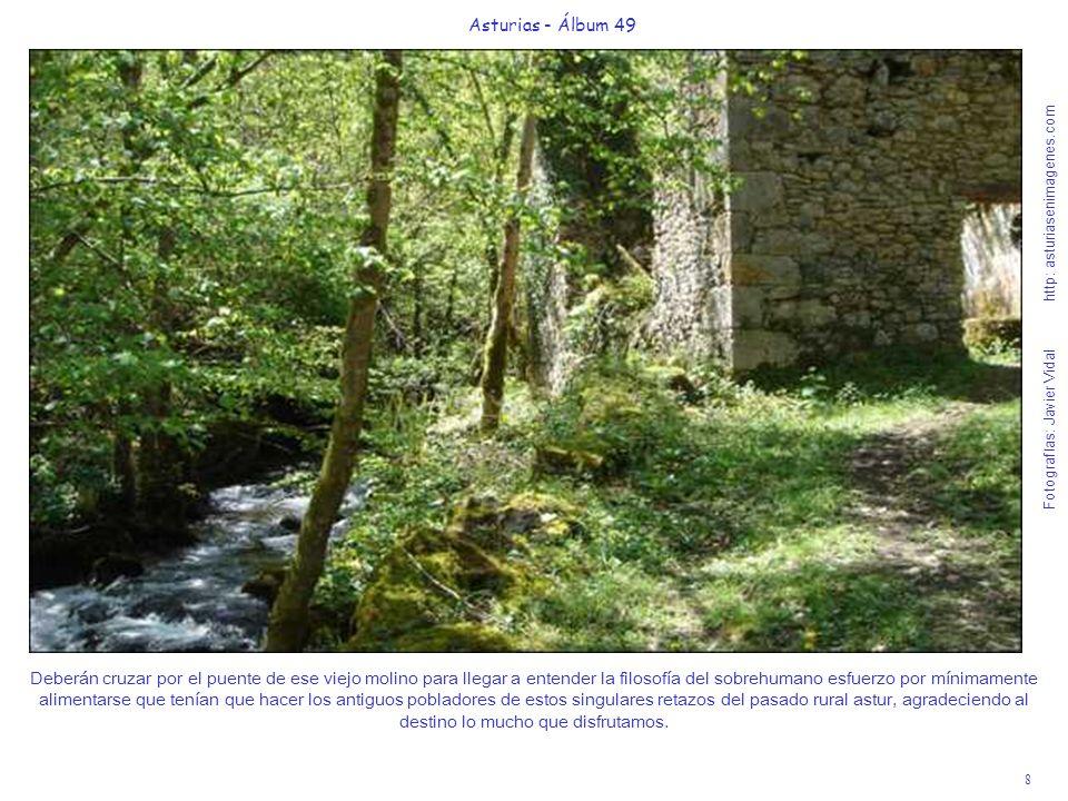 8 Asturias - Álbum 49 Fotografías: Javier Vidal http: asturiasenimagenes.com Deberán cruzar por el puente de ese viejo molino para llegar a entender l