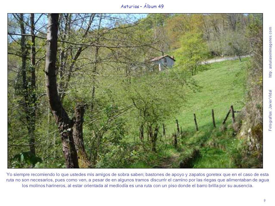 9 Asturias - Álbum 49 Fotografías: Javier Vidal http: asturiasenimagenes.com Yo siempre recomiendo lo que ustedes mis amigos de sobra saben; bastones