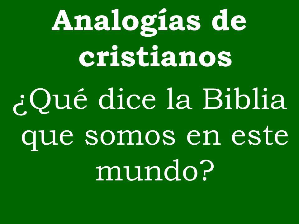 Analogías de cristianos ¿Qué dice la Biblia que somos en este mundo?