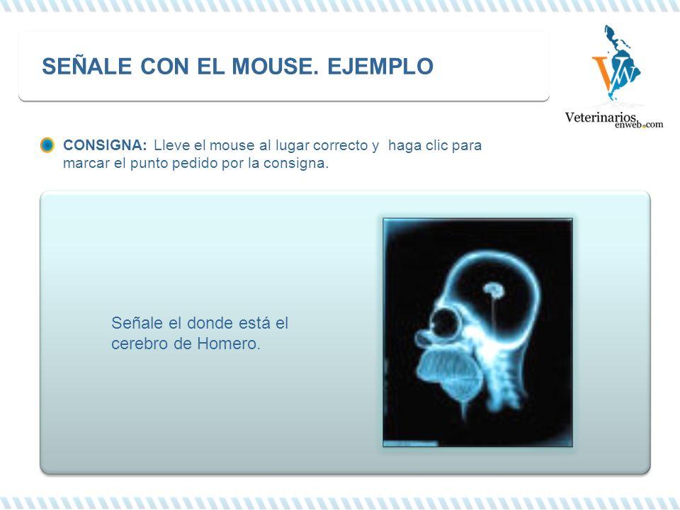 SEÑALE CON EL MOUSE. EJEMPLO CONSIGNA: Lleve el mouse al lugar correcto y haga clic para marcar el punto pedido por la consigna. Señale el donde está
