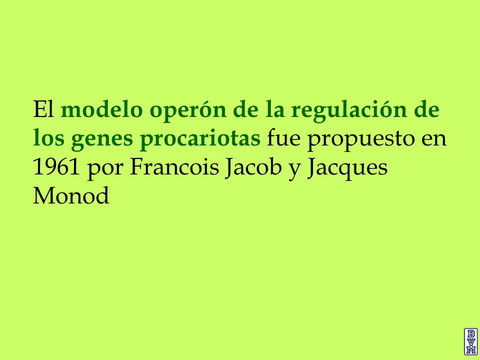 El modelo operón de la regulación de los genes procariotas fue propuesto en 1961 por Francois Jacob y Jacques Monod