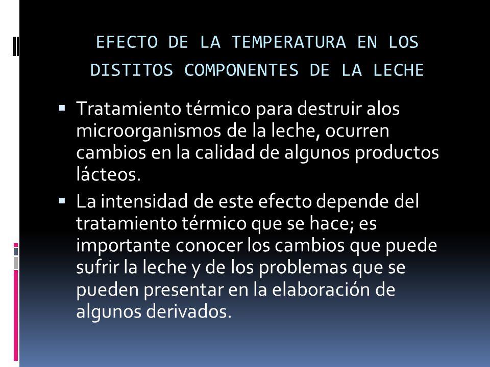 EFECTO DE LA TEMPERATURA EN LOS DISTITOS COMPONENTES DE LA LECHE Tratamiento térmico para destruir alos microorganismos de la leche, ocurren cambios e