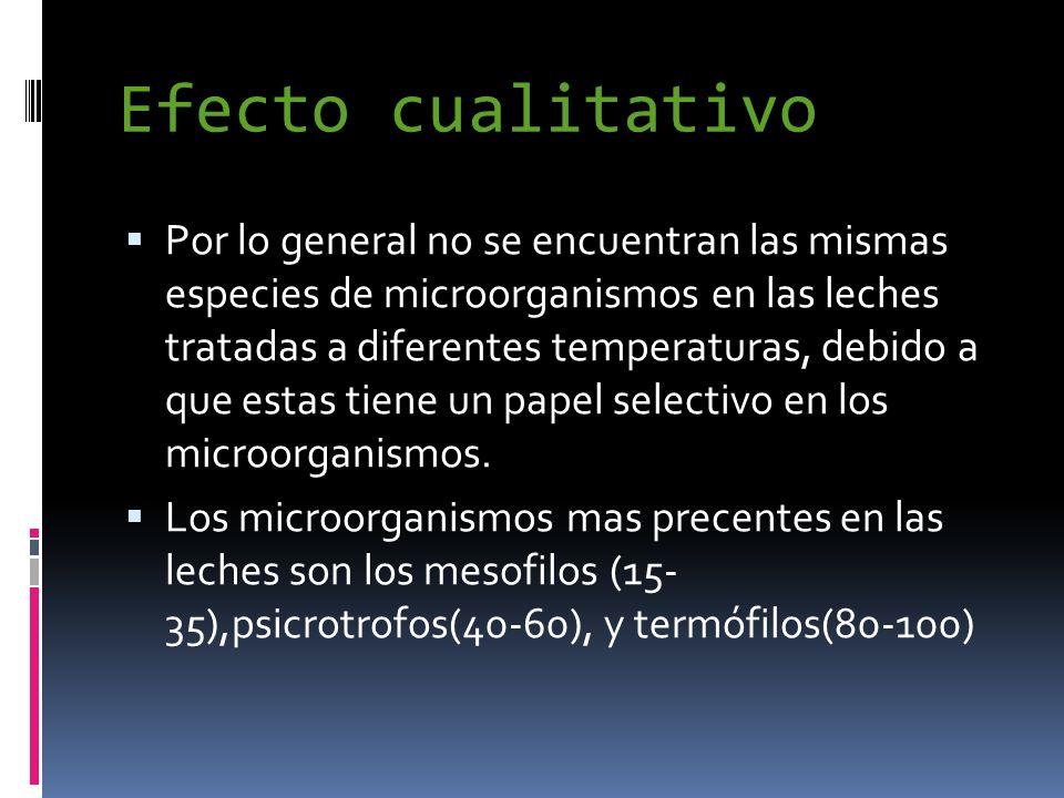 Efecto cualitativo Por lo general no se encuentran las mismas especies de microorganismos en las leches tratadas a diferentes temperaturas, debido a q