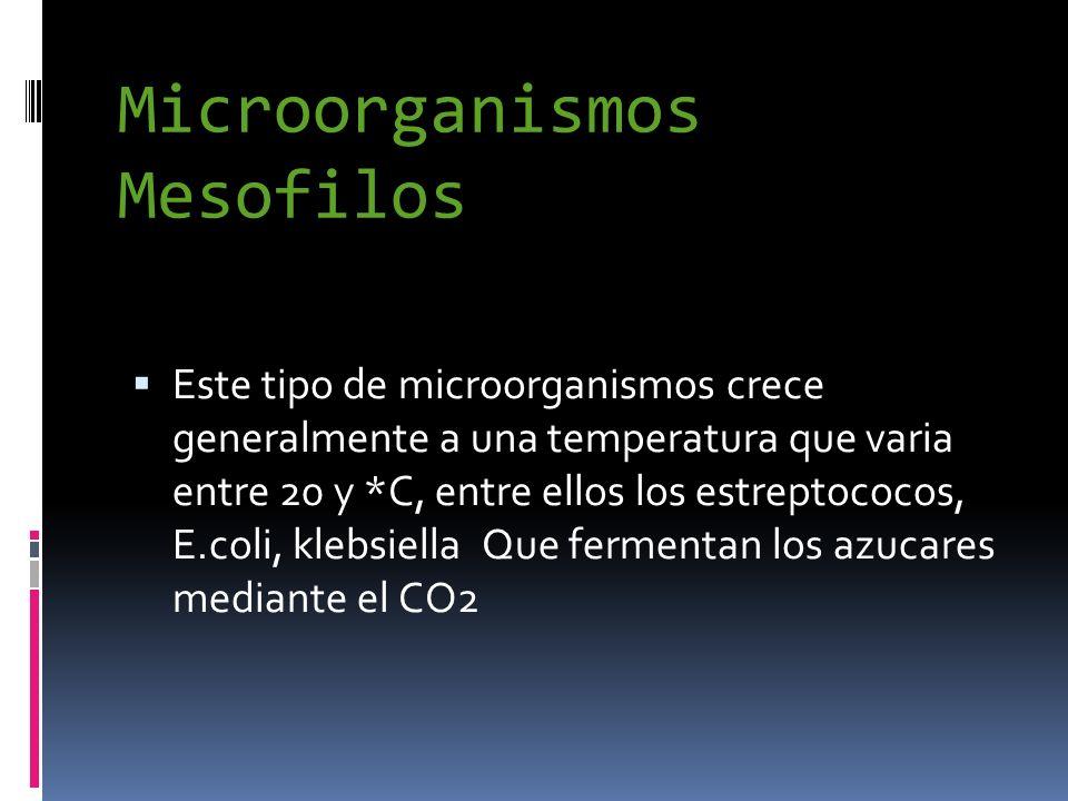 Microorganismos Mesofilos Este tipo de microorganismos crece generalmente a una temperatura que varia entre 20 y *C, entre ellos los estreptococos, E.