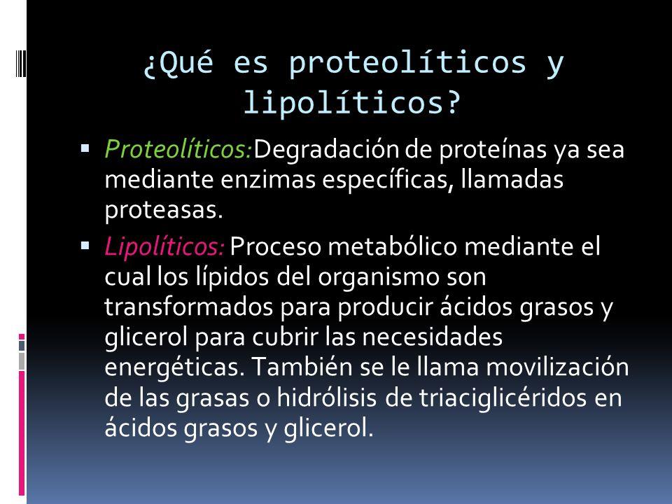 ¿Qué es proteolíticos y lipolíticos? Proteolíticos:Degradación de proteínas ya sea mediante enzimas específicas, llamadas proteasas. Lipolíticos: Proc