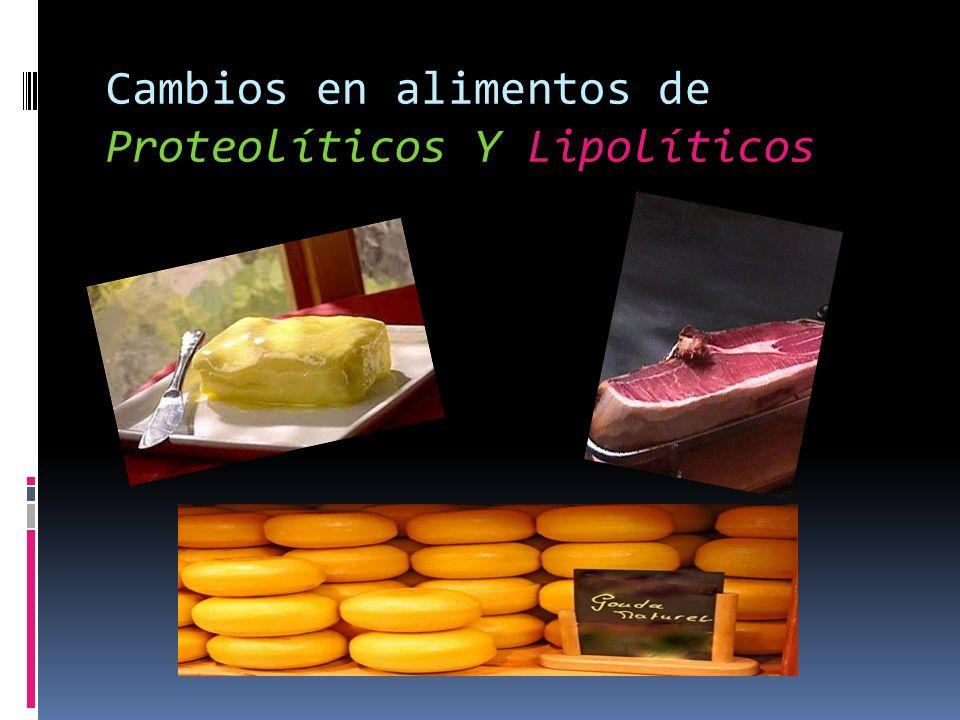 Cambios en alimentos de Proteolíticos Y Lipolíticos