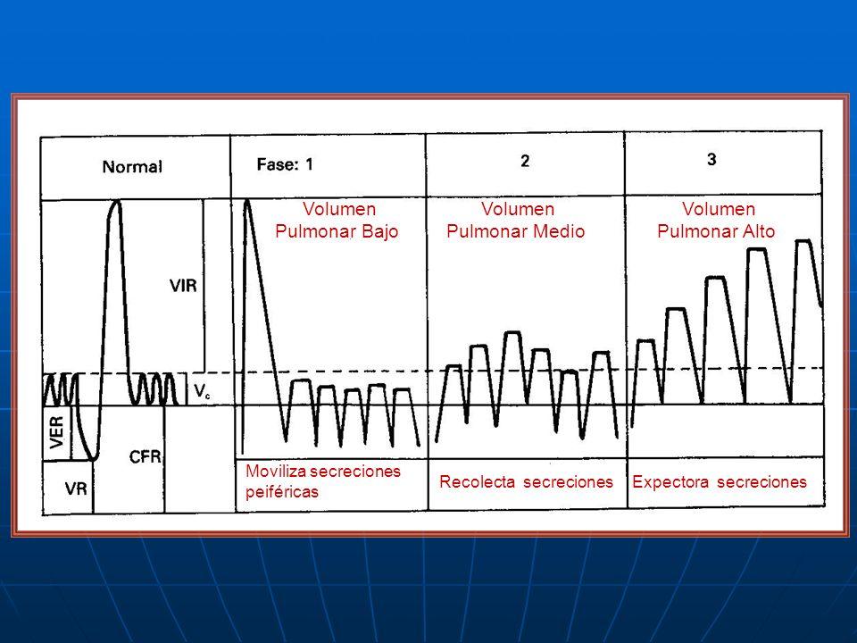 Volumen Pulmonar Bajo Volumen Pulmonar Medio Volumen Pulmonar Alto Moviliza secreciones peiféricas Recolecta secrecionesExpectora secreciones