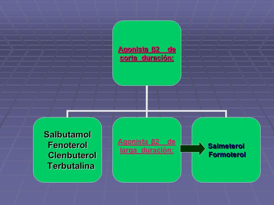 Agonista β2 de corta duración: SalbutamolFenoterol Clenbuterol Clenbuterol Terbutalina Terbutalina Agonista β2 de larga duración:Salmeterol Formoterol