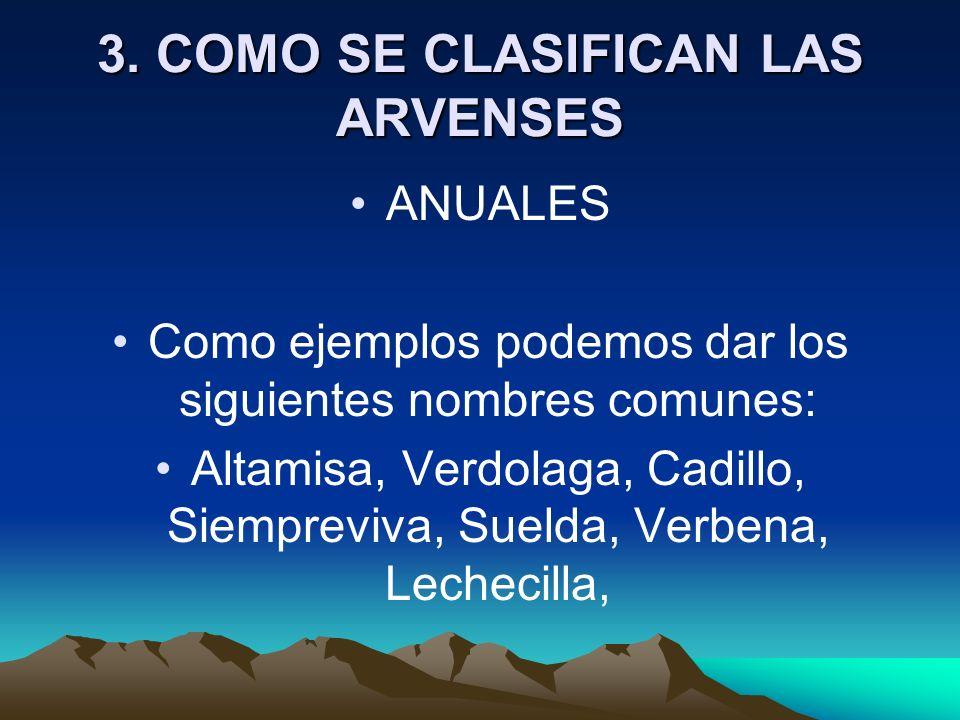3. COMO SE CLASIFICAN LAS ARVENSES ANUALES Como ejemplos podemos dar los siguientes nombres comunes: Altamisa, Verdolaga, Cadillo, Siempreviva, Suelda