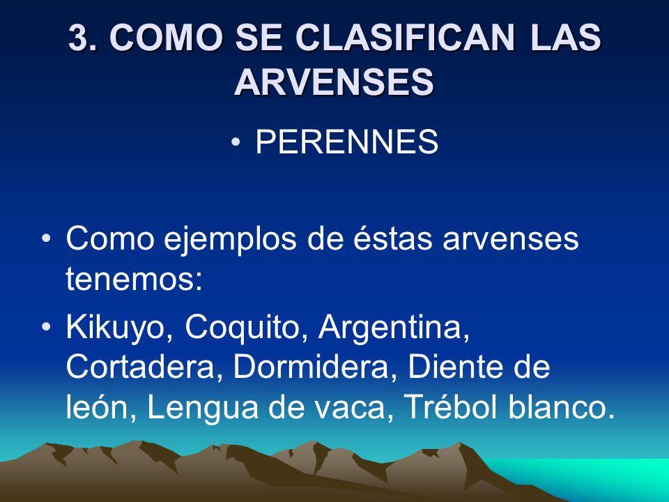 3. COMO SE CLASIFICAN LAS ARVENSES PERENNES Como ejemplos de éstas arvenses tenemos: Kikuyo, Coquito, Argentina, Cortadera, Dormidera, Diente de león,